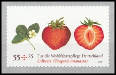 FRG MiNo. 2777 ** Welfare: Fruits - Garden strawberry, MNH, self-adhesive