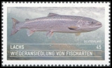 FRG MiNo. 3051 ** Reintroduction of fish species, MNH