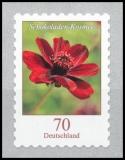 BRD MiNr. 3197 ** Dauerserie Blumen: Schokoladen-Kosmee, postfr., selbstklebend