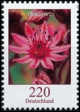 BRD MiNr. 3414 ** Dauerserie Blumen: Hauswurz, postfrisch