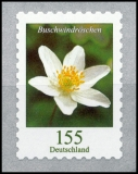FRG MiNo. 3484 ** Permanent series Flowers: Wood anemone, self-adhesive, MNH