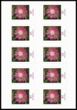 FRG MiNo. FB 90 (3483) ** Series Flowers: Knapweed, foil sheet, self-adh., MNH