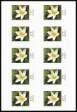 FRG MiNo. FB 91 (3484) ** Flowers: Wood anemone, foil sheet, self-adh., MNH