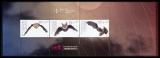 FRG MiNo. MH 115 (3485-3487) ** Youth 2019: Bats, stamp set, MNH